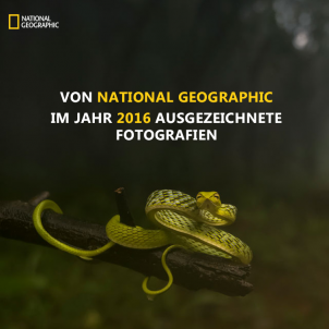 Von National Geographic ausgezeichnete Fotografien