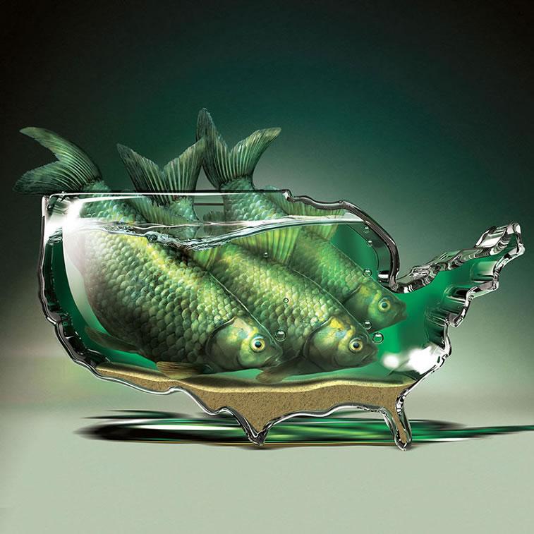 illustration igor morski 41