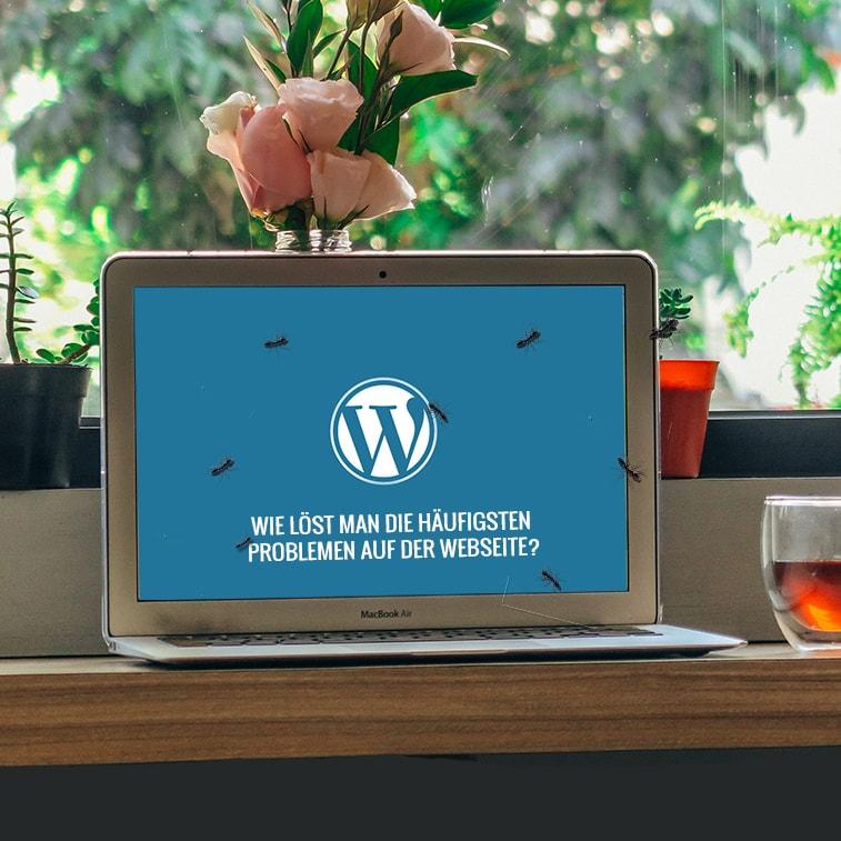 Wie löst man die häufigsten Problemen auf der Webseite?