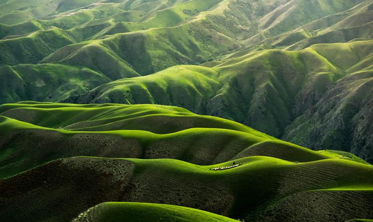Grüne Berge