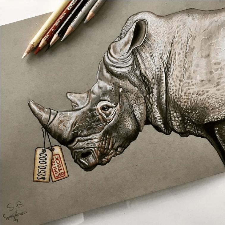 Nashorn von Sam Bailey